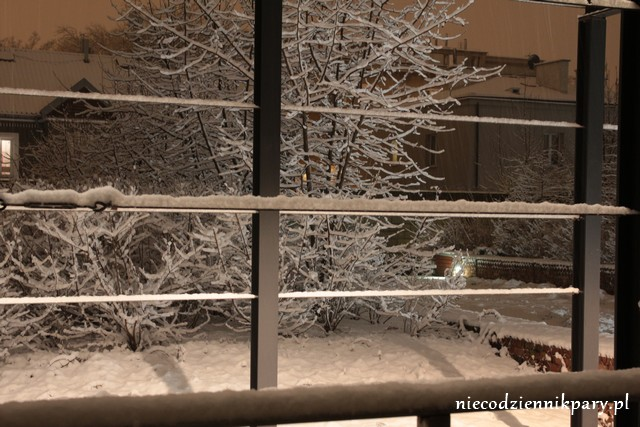 zima_15.01.2016